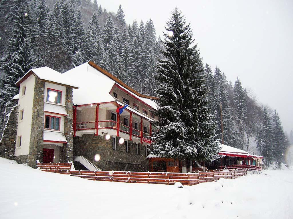 Tabara Iarna 2017